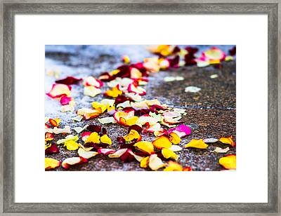 The Road - Featured 3 Framed Print by Alexander Senin