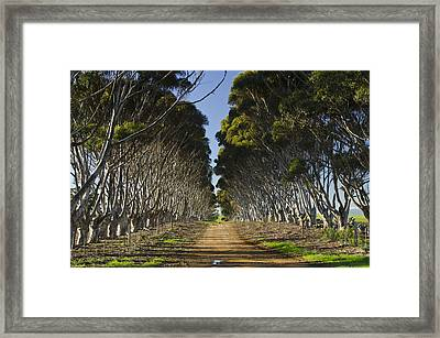 The Road Home Framed Print by Aaron Bedell