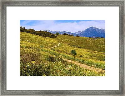 The Road Home Framed Print by Camille Lopez