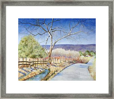 The Road Home Framed Print by Cynthia Parsons