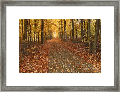 The Road North Framed Print