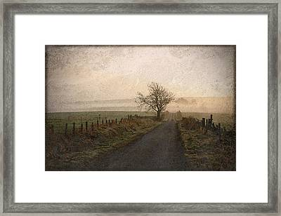 The Road Not Taken Framed Print by Liz  Alderdice