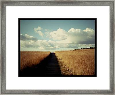 The Road Rarely Taken Framed Print by Beril Sirmacek