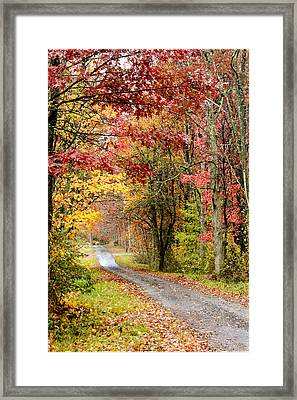 The Road Through Fall Framed Print by Robert Camp
