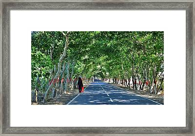 The Road To Amarkantak - Amarkantak India Framed Print by Kim Bemis
