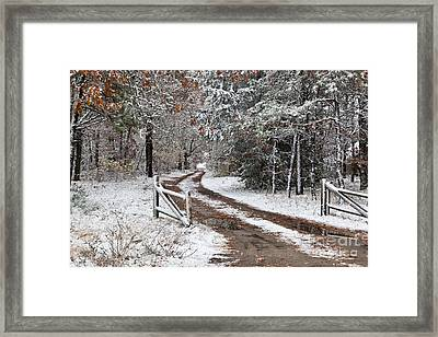 The Road To The River Framed Print by Michelle Wiarda