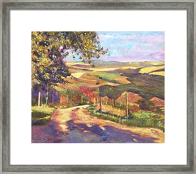 The Road To Tuscany Framed Print by David Lloyd Glover