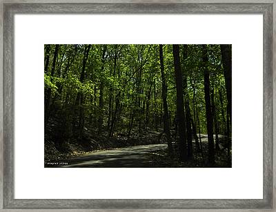 The Roads Of Alabama Framed Print