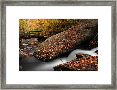 The Rock Framed Print by Dan Myers