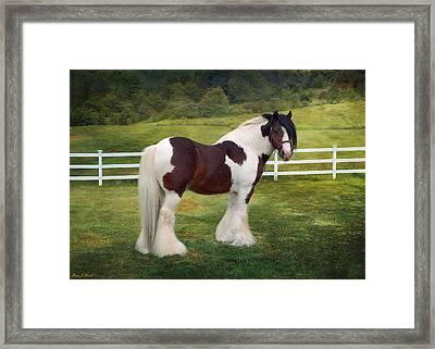 The Rock Framed Print by Fran J Scott