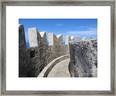 The Rocks And The Path Framed Print by Ramona Matei