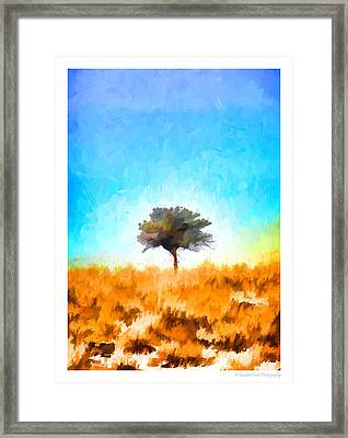 The Romance Of Being Lonely Framed Print
