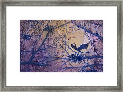The Rookery Revisited Framed Print