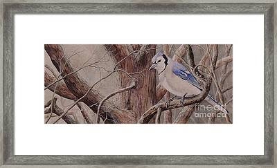 The Roost Sold Framed Print
