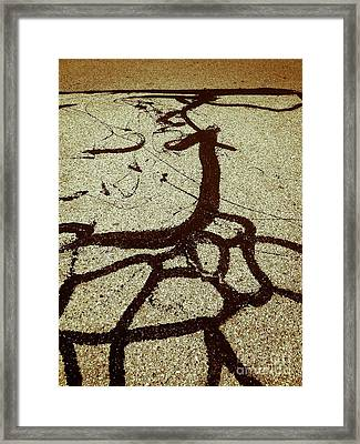 The Roots Framed Print by Fei A