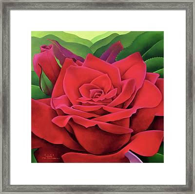 The Rose Framed Print by Myung-Bo Sim