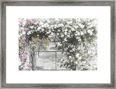 Framed Print featuring the photograph The Rose Arbor by Elaine Teague