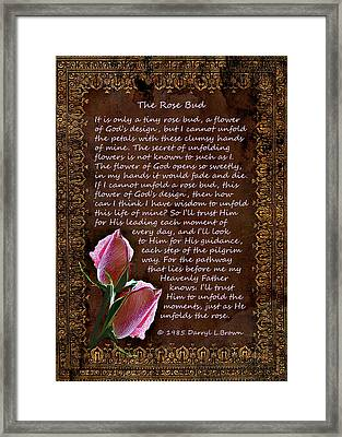 The Rose Bud Framed Print