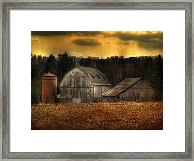 The Rose Farm Framed Print by Thomas Young