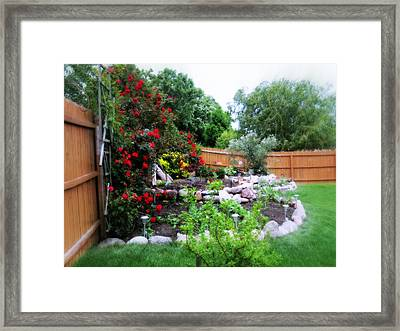 The Roses Are Blooming Framed Print by Kay Novy