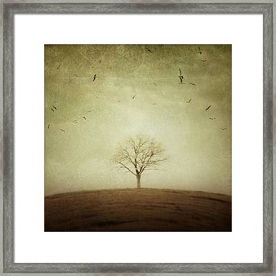 The Round Earth Framed Print by Irene Suchocki