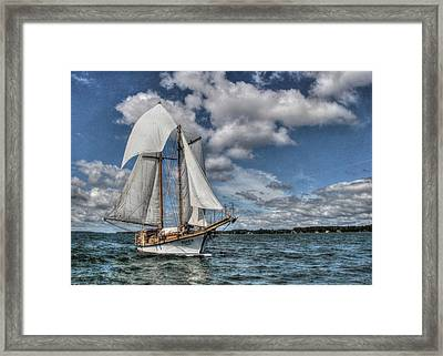The Rover Framed Print by Lori Deiter