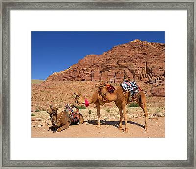The Royal Tombs Framed Print by Tony Beck