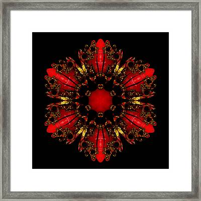 The Ruby Flame Broach Framed Print