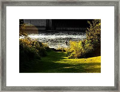 The Saint Joseph River Niles Michigan Framed Print