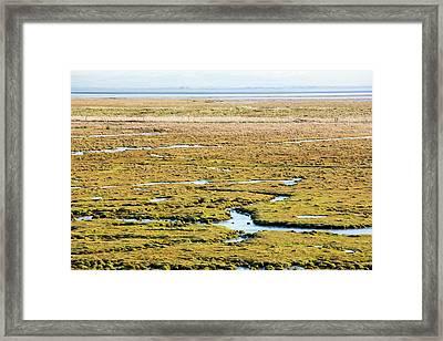 The Salt Marsh Or Merse At Caelaverock Framed Print