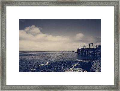 The Salty Air Framed Print by Laurie Search