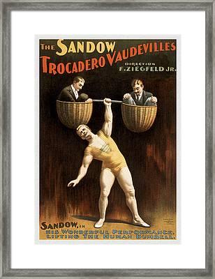 The Sandow Framed Print