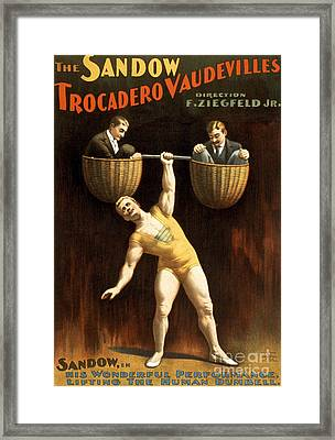 The Sandow Trocadero Vaudevilles, 1894 Framed Print