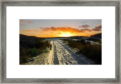 Framed Print featuring the photograph The Sandy Way by Sandro Rossi