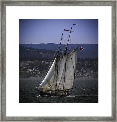The Schooner Pacific Grace Framed Print
