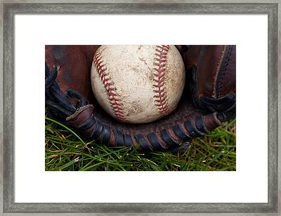 The Scoop Framed Print by David Patterson