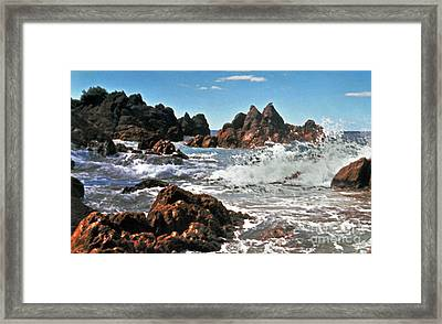 The Sea Abounds Framed Print by Lydia Holly