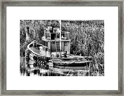 The Sea Dive Framed Print