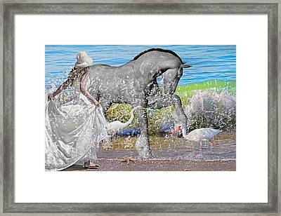The Sea Horse Framed Print by Betsy Knapp