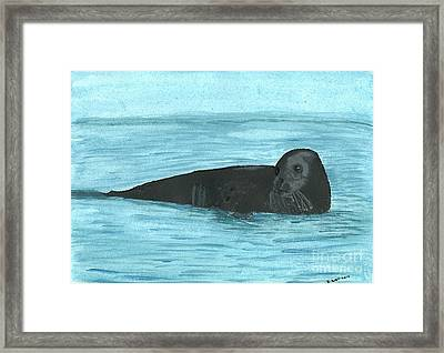 The Seal Framed Print by Tracey Williams