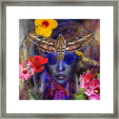 The Search For Hibiscus Life Framed Print