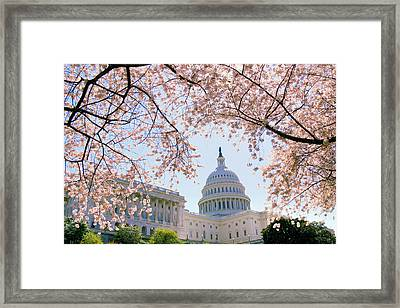 The Seasonal Experience Framed Print