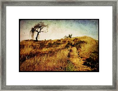The Secret Pathway To Aspiration Framed Print by Brett Pfister
