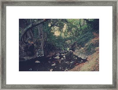 The Secret Spot Framed Print