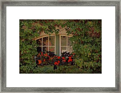 The Secret Window Framed Print by Maria Angelica Maira