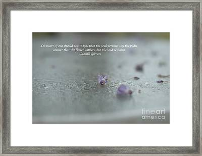 The Seed Framed Print