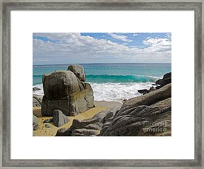 The Sentinel -- Baja California Sur Framed Print by Sean Griffin