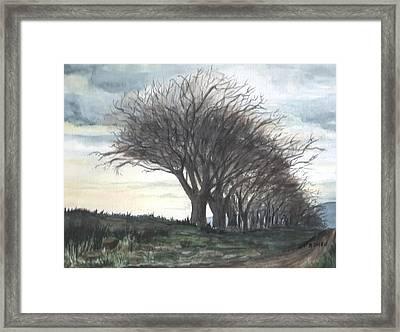 The Sentinels Framed Print by Brenda Owen