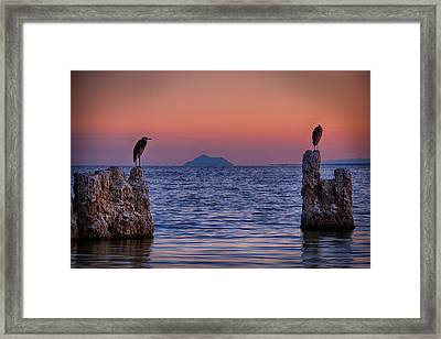 The Sentinels  Framed Print by Peter Tellone