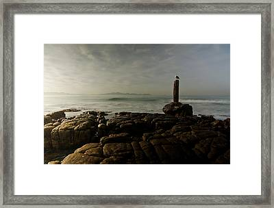 The Sentry And The Sea Framed Print by Aaron Bedell